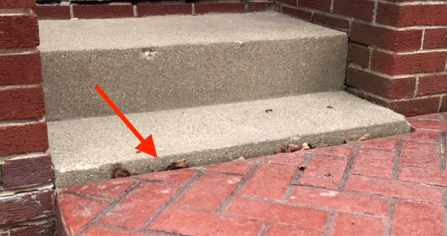 Concrete raising leveling